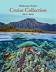 Cruise Collection Brochure