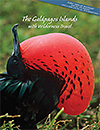 Galapagos Islands Brochure