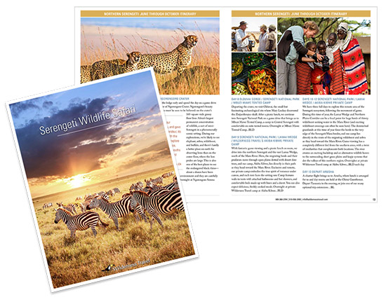 Serengeti wildlife safari brochure