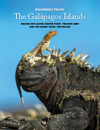 The Galapagos Islands 2019