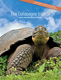The Galapagos Islands 2020