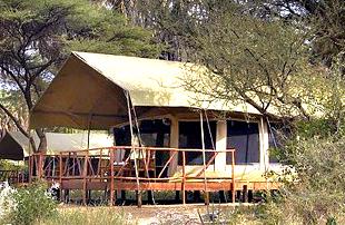 Elephant Bedroom Camp Wilderness Travel