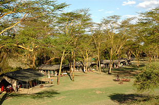 Private classic camp lake nakuru 03