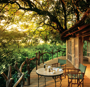 Lake manyara tree lodge 01