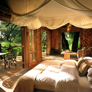 Lake manyara tree lodge 04