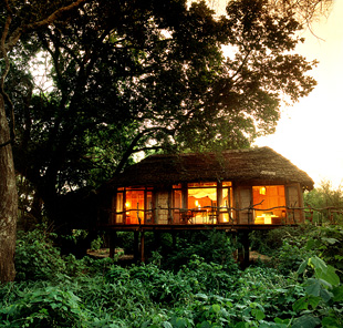 Lake manyara tree lodge 06