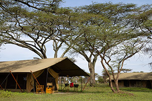 Serengeti private mobile camp 02