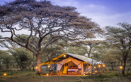 Serengeti wildlife safari camps 01