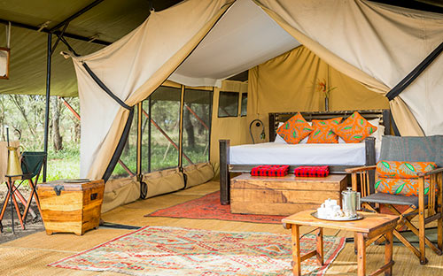 Serengeti wildlife safari camps 02
