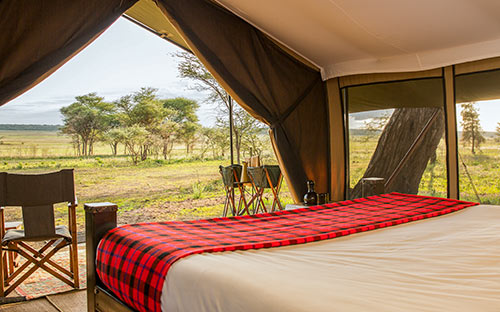 Serengeti wildlife safari camps 03