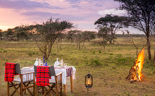 Serengeti wildlife safari camps 06