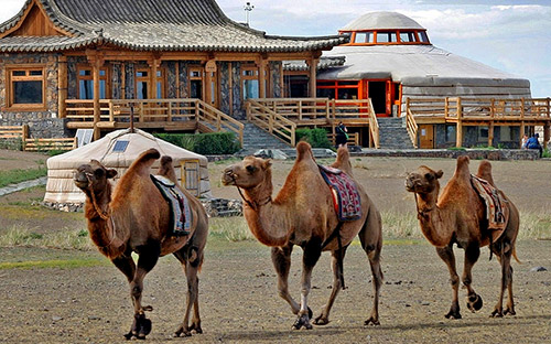 Three camel lodge 07