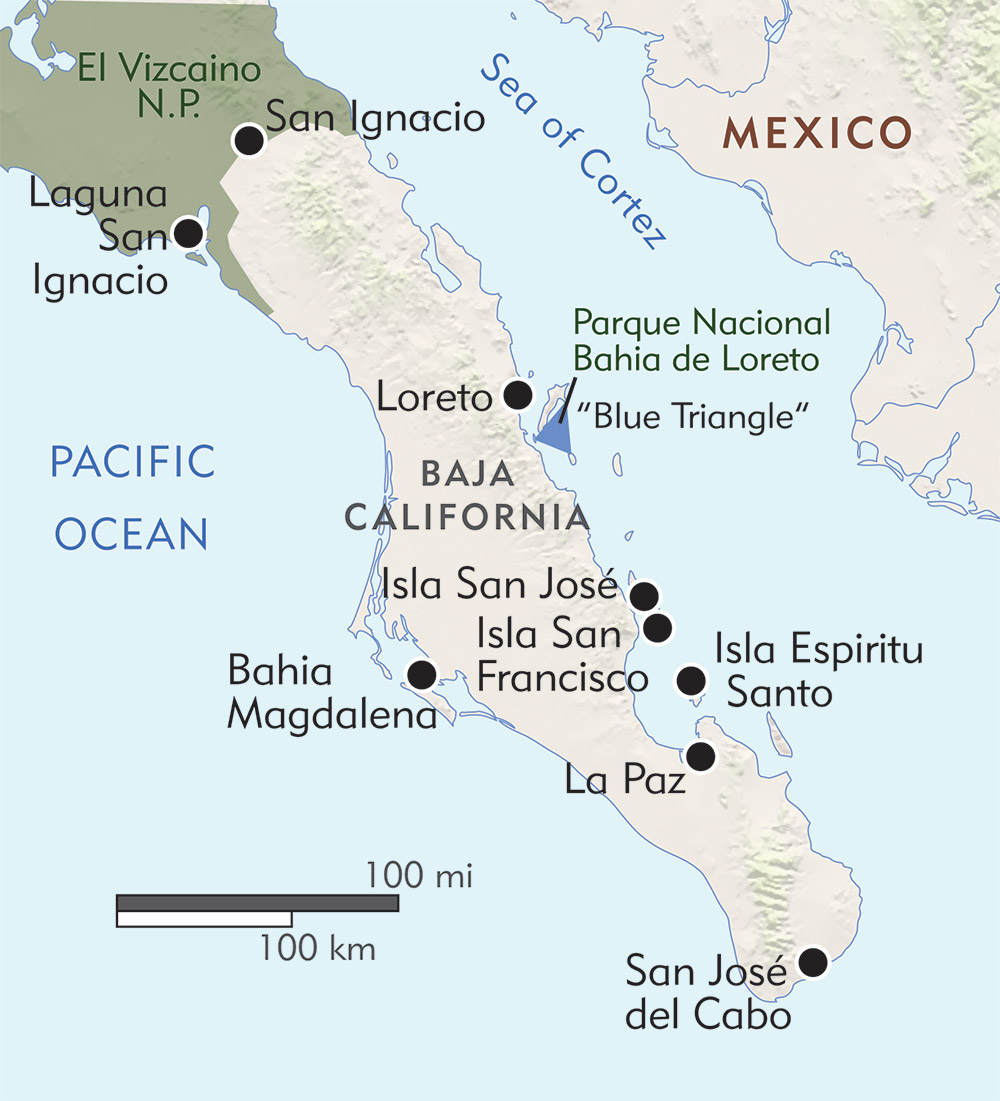 Baja: Exploring the Sea of Cortez route-map