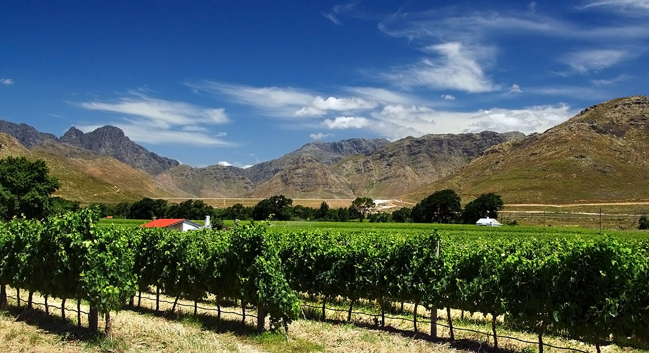 Cape winelands extension wilderness travel for Jardin winery south africa