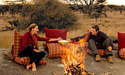 serengeti safari; african luxury safari; tented camp