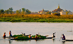 local canoes and golden temple on the Irrawaddy River in Burma