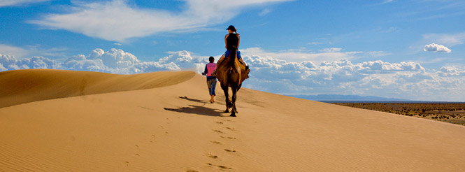 Bactrian camel and rider on the sand dunes of the Gobi Desert of Mongolia