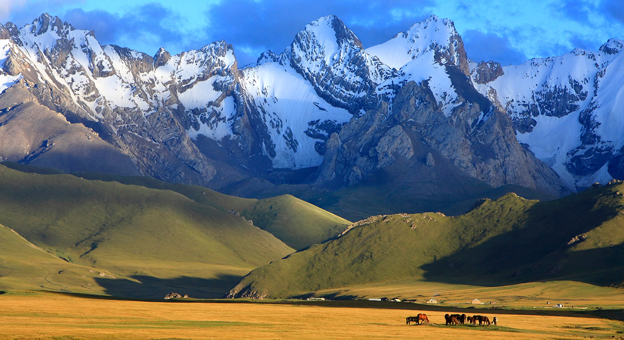 A Taste Of The Silk Road