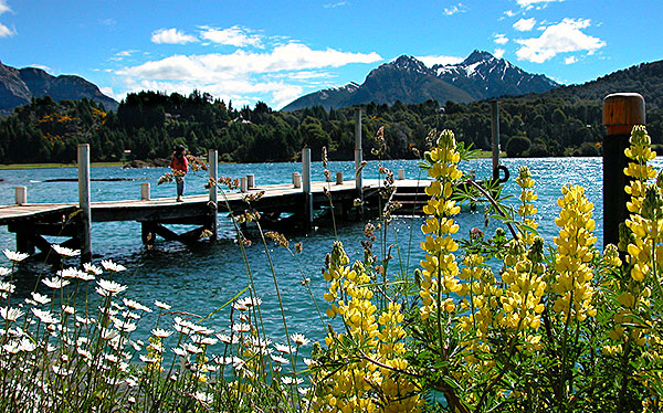 san carlos de bariloche mountain lake wildflowers