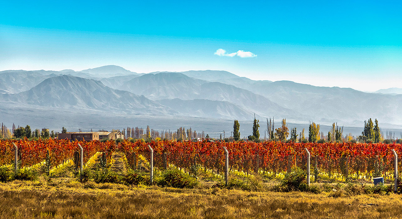 an overview of the country of chile Chile information including population, climate, languages, and atacama desert   for a relatively small country of its size, the range in scenery is among the.