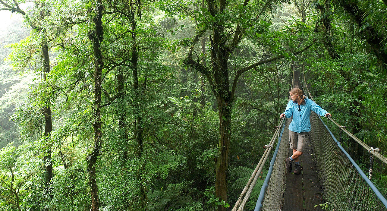 Monteverde Cloud Forest Reserve Extension Wilderness Travel