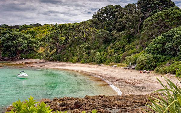 new zealand tiritiri matangi island hobbs beach