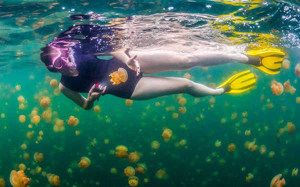 Trips in Palau - Wilderness Travel