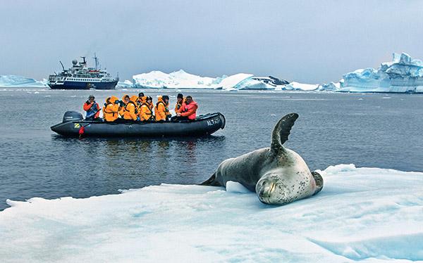 Trips In Antarctica  Wilderness Travel